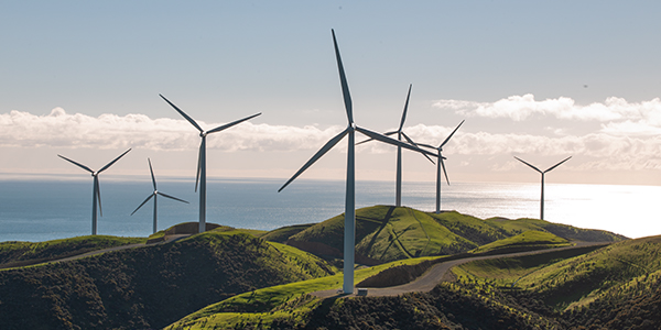 Wind turbines at Meridian's West Wind farm